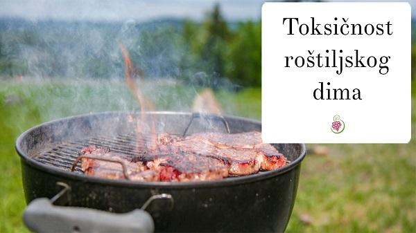 Toksičnost roštiljskog dima
